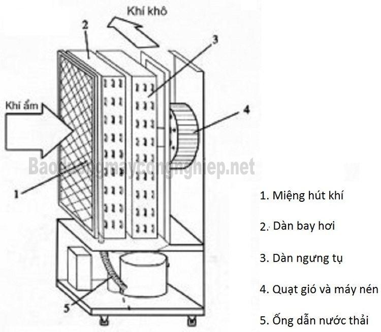 may hut am khong ra nuoc co phai bi hong