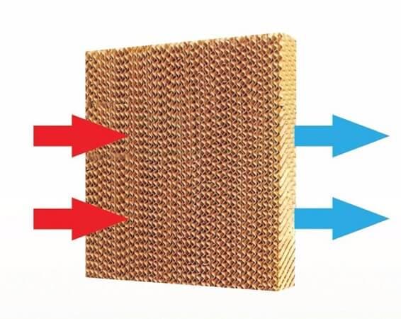 Tấm giải nhiệt cooling pad
